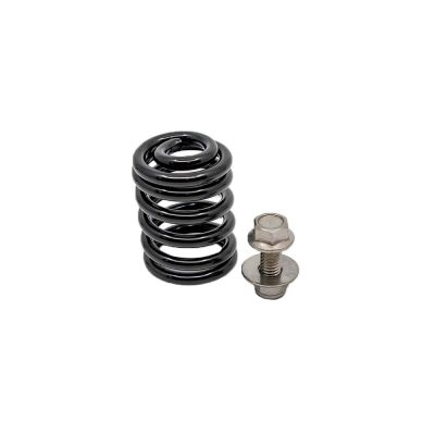 Foot Plate Spring (With HDWR)